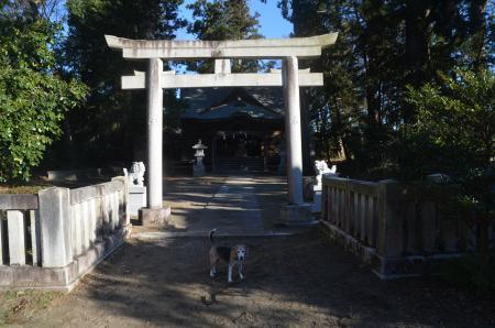 20201217諏訪神社14