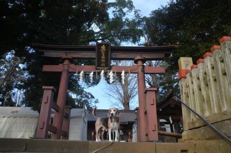 20201218麻賀多神社02