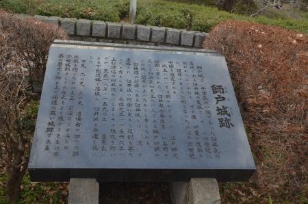 20210105師戸城19