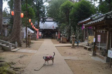 20210106東金日吉神社09