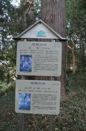 20210111皇産霊神社18
