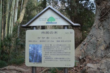 20210111皇産霊神社15