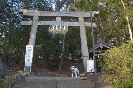 20210122駒形神社05