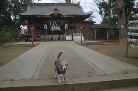 20210126麻賀多神社06