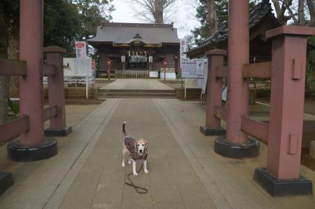 20210126麻賀多神社04