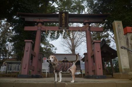 20210126麻賀多神社02