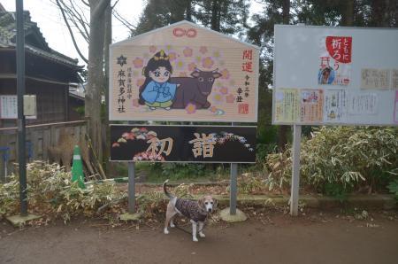 20210126麻賀多神社17