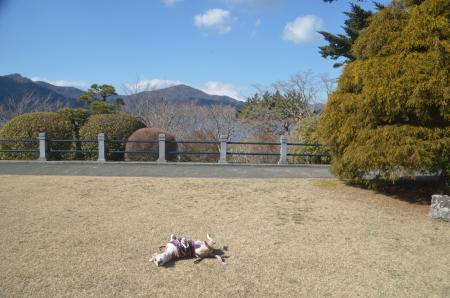 20210131神奈川の景観5008