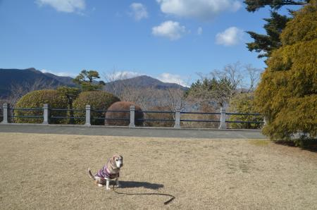20210131神奈川の景観5007