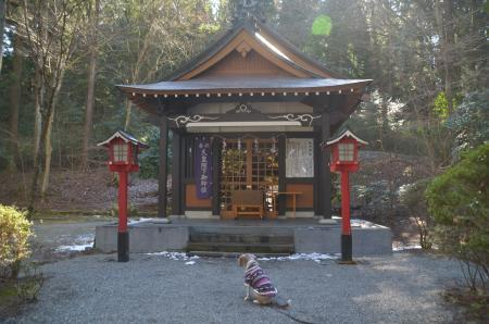 20210131駒形神社09