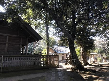 20210204白幡神社37