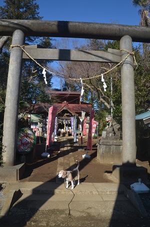 20210205冨里香取神社01