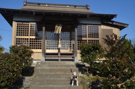 20210205立嶋水神社05