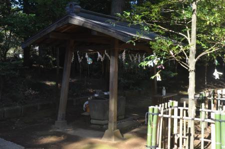 20210205成田豊住熊野神社04