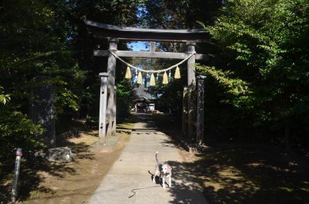 20210205成田豊住熊野神社02