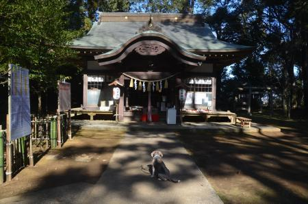 20210205成田豊住熊野神社09