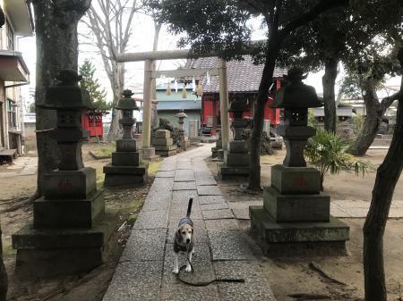 20210206今井神社04