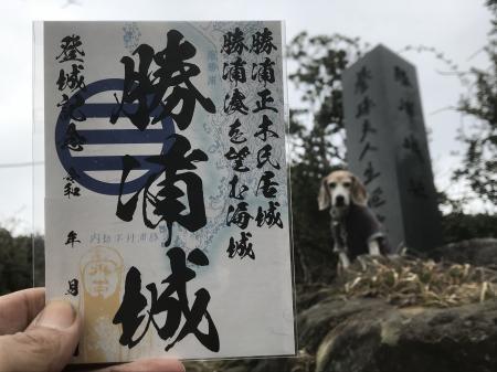 20210206勝浦城06