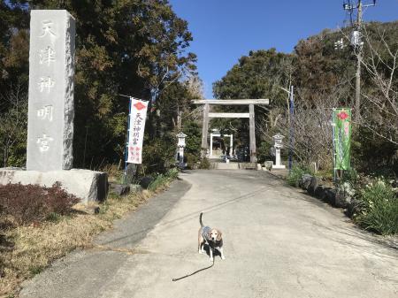 20210206天津神明社04