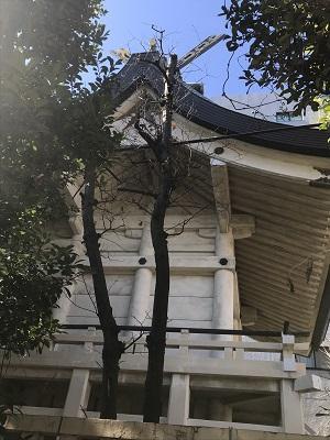 20210209猿江神社08