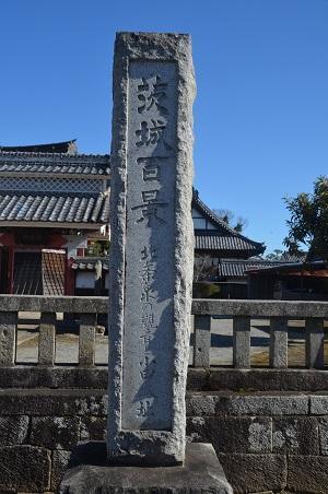 20210216観音と小田城址03
