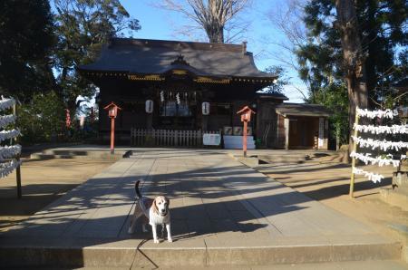 20210224麻賀多神社05