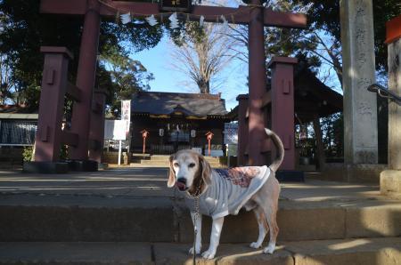 20210224麻賀多神社03