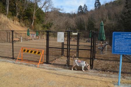 20210225福ちゃん公園20