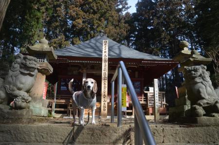 20210225徳蔵寺06