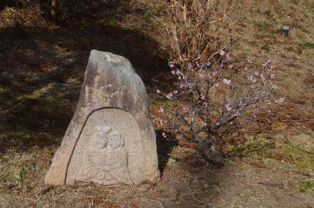 20210225徳蔵寺22
