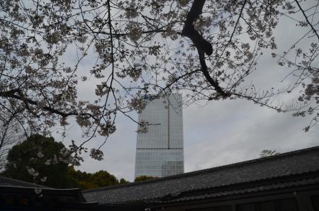 20210322日枝神社22
