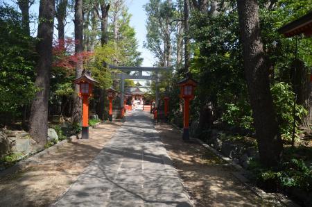 20210331馬橋稲荷神社09