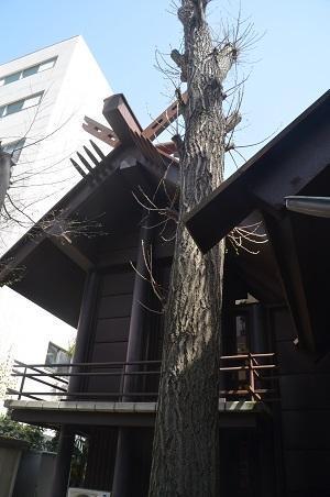 20210331高円寺氷川神社11