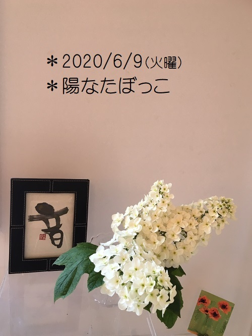 20200609ppoi1.jpg