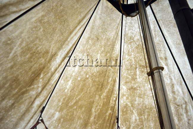 何がなんでもキャンプだし オートキャンプ fuzibisou 3TC タトンカ 結露 ポリコットン 撥水 ニクワックス コットンプルーフ ミモレットチーズ