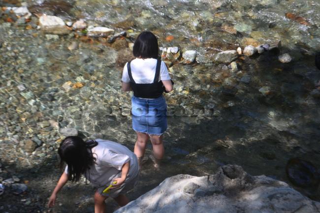 何がなんでもキャンプだし 久保キャンプ場 プードル ココア 水遊び 道志川 ライフジャケット 台風 急な流れ 危険 安全