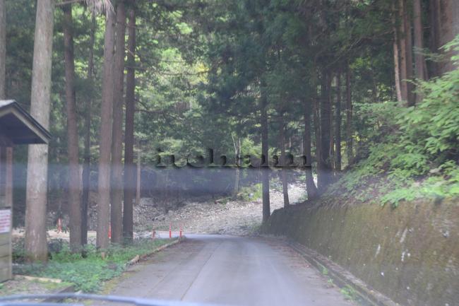 何がなんでもキャンプだし fuzibisou 富士見荘 オートキャンプ場 椿荘 道志 フリーサイト テンティピ 犬連れキャンプ 新しい幕体 サイトコンディション