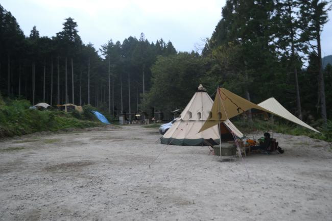何がなんでもキャンプだし オートキャンプfuzibisou ひな壇 プライベート感 プライバシー 犬連れキャンプ 植栽 段差 貴重 散歩 ココア