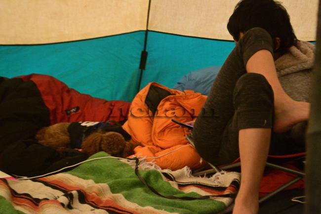 何がなんでもキャンプだし 室久保グリーンパーク 道志 紅葉 針葉樹 落葉 都留 キャンプ トマト好き 犬 管理