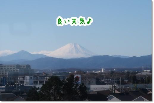 IMG_9850.jpg