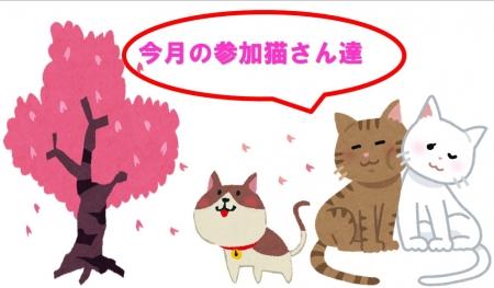 今月の参加猫さん