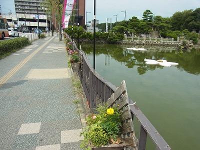 shukusho-RIMG1519 - コピー