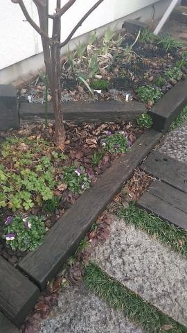 春直前の花壇、冬のなごり