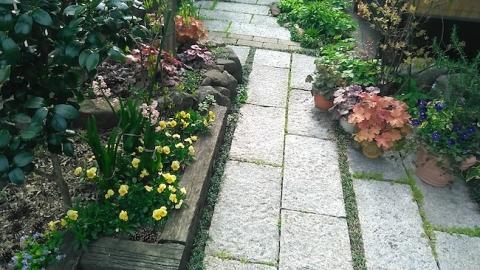 春のガーデニング、玄関前