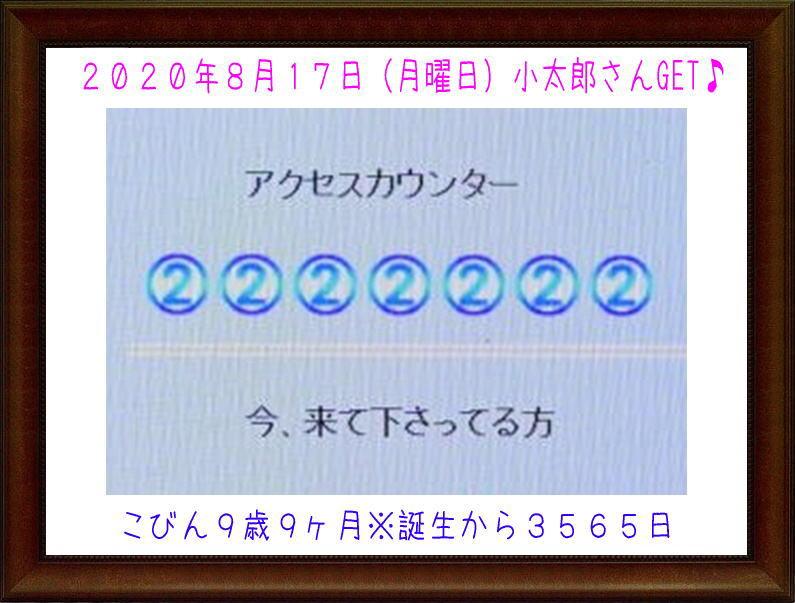 こびん2222222 0-1