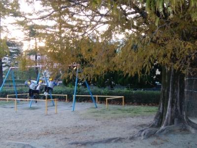 1201(火)貝塚公園 (13)
