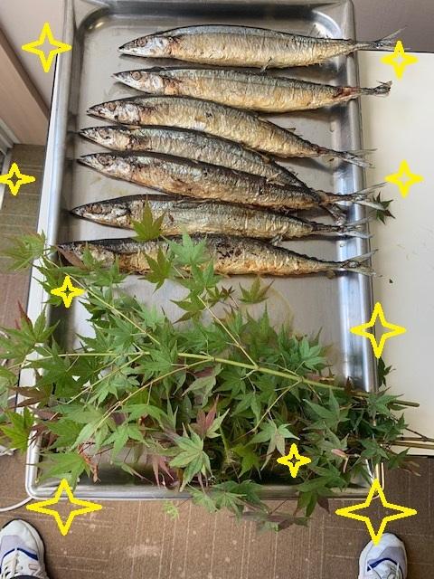 秋刀魚定食㉑