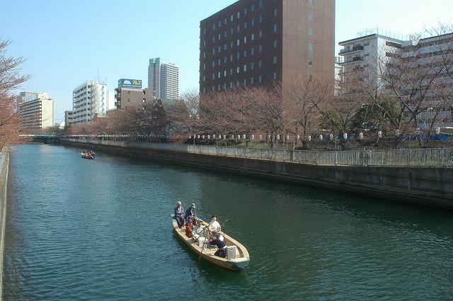 Sakura Fes050403 (24)