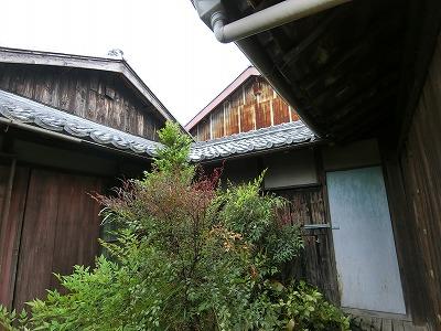 屋根修理 (1)