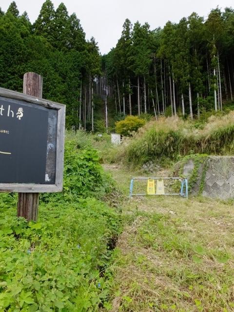 平林の棚田水源の森・山梨県富士川町